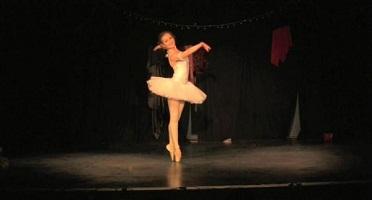 galerie-fée candide -danse oiseaubleu